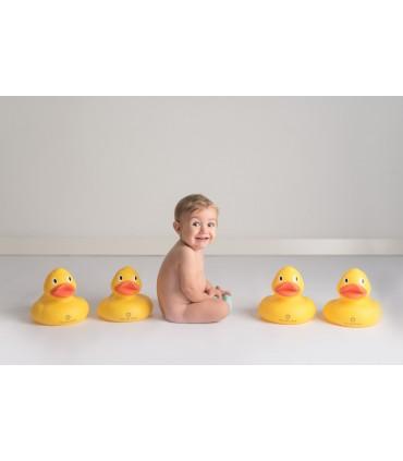 Pato grande baño Olmitos