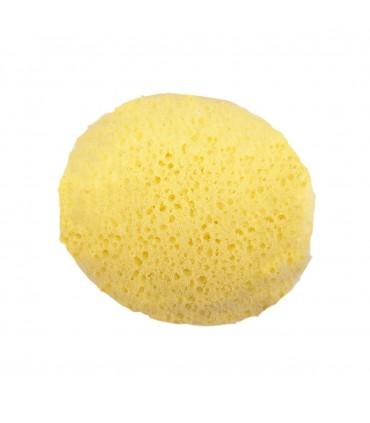 Baby hydrophilic sponge Olmitos